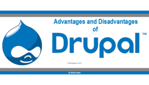 drupal-advantages--disadvantages-information-tips-guide-help-logo-cms-advantage-of-using-benefits-review-overview