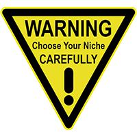 niche,choose,choosing,choice,guide,tips,advice,help,information