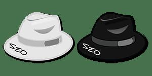white hat seo,black hat seo,search engine optimization
