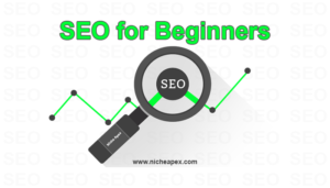 SEO-for-beginners-search-engine-optimization-search engine optimization-guide-tips-reference-information