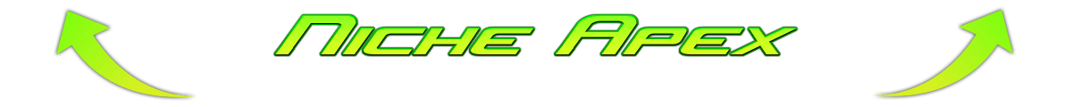 niche-apex-website-site-blog-SEO-marketing-web-development-design-monetization-resourses-niche apex-best niche-best blog-best website-make money-adsense-affiliate-advertising