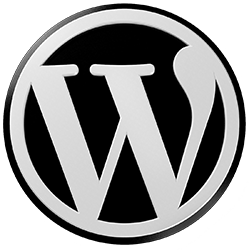 wordpress seo tips,wordpress