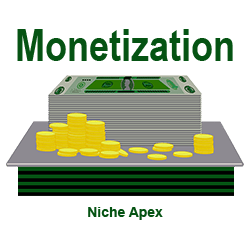 monetization-monetize-money-income-earn-revenue-cash-dollars-tips-guide-information-help-free-website-blog-niche